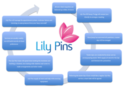 View The Lily Pins Operating Model For New Care Home Clients